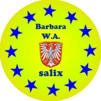 SALIX Seite